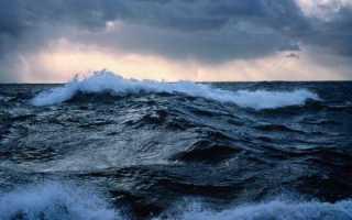 Для какого океана характерны малые площади бассейнов рек