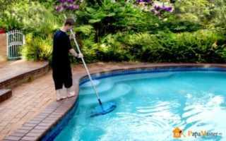 Зелень на дне бассейна как почистить