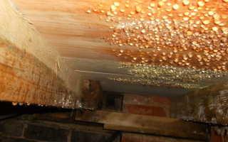 Вентиляция в ванной в частном доме конденсат