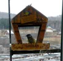 Кормушка для птиц на балконе своими руками