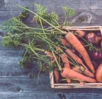 Шкаф для хранения овощей на балконе своими руками
