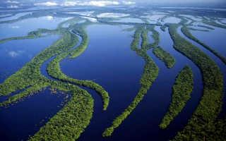 Амазонка какой бассейн океанов