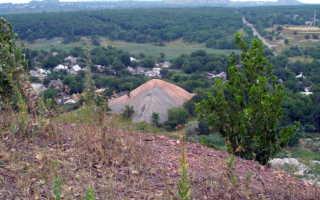 Донецкий угольный бассейн в каком районе