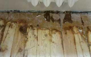 Бетонная стяжка вместо деревянного пола в квартире своими руками