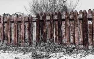 Как дешево обработать забор