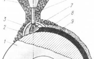 Механизированные способы сварки и наплавки деталей