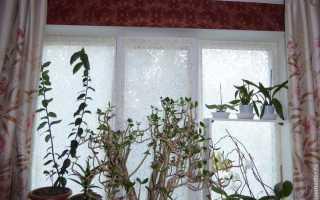Шторки на липучке на окна своими руками