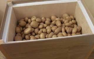 Как сделать ящик для хранения картофеля на лоджии зимой